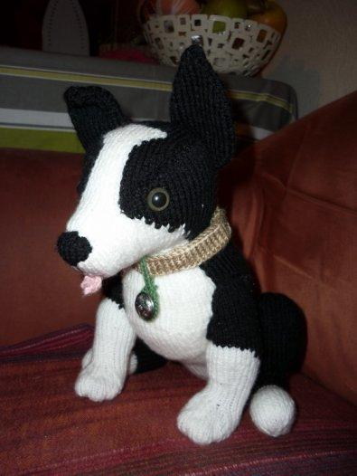 chien en tricot