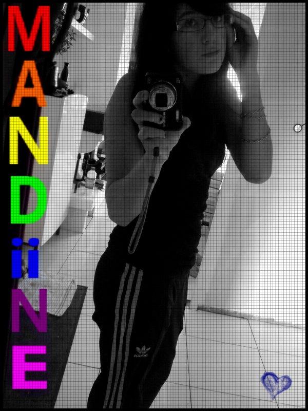 Mandinee ; Un certain Blaze pour une Certaine personne . . ♥     ♪