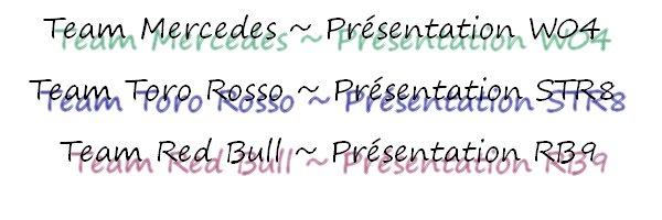 04.02.2013 : Présentation RB9, W04 et STR8
