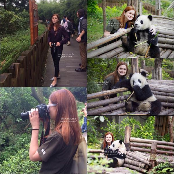 - 27 Septembre 2014 : Bonnie a eu la chance d'avoir pu voir des pandas à Chengdu. Elle a ainsi visité le parc animalier et a également fait une donation pour des recherches de reproduction de pandas géants. -