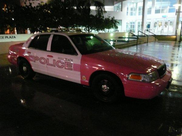 ELLE EST BELLE LA POLICE