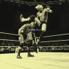 J-WWE-Fiction