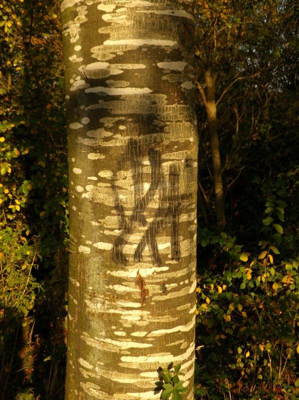 CT37 Rennes Jardins familiaux Relais tags (suite)