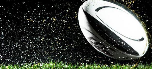 TF1 et Canal+ ont conclu un accord pour l'exploitation des droits de diffusion de la Coupe du Monde de Rugby 2015...