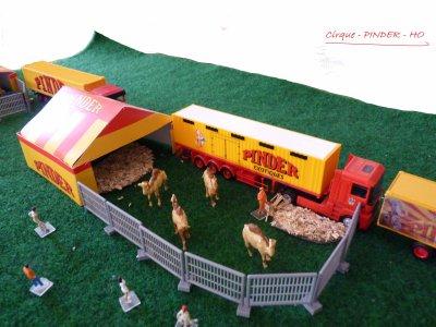 Les dromadaires du cirque PINDER !!