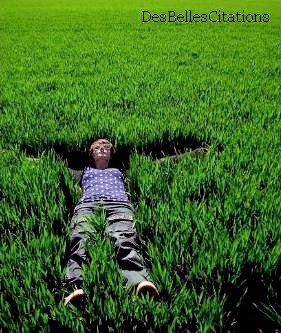 """""""Comme à dit Bob Marley : Ne marchons pas sur l'herbe, fumons la."""" Bob Marley."""