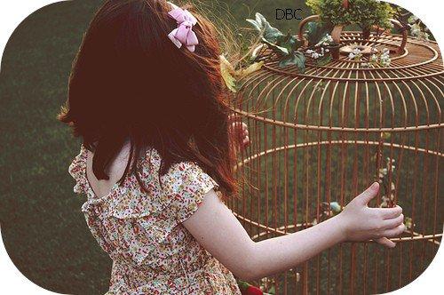 """""""Rien n'est trop haut pour l'oiseau, s'il vole de ses propres ailes."""" William Blake."""