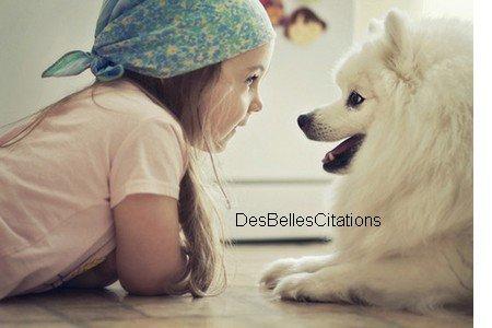"""""""Le chien aime passionnément les odeurs fétides. Si le chien est fidèle à l'homme, c'est parce que l'homme pue."""" François Cavanna."""