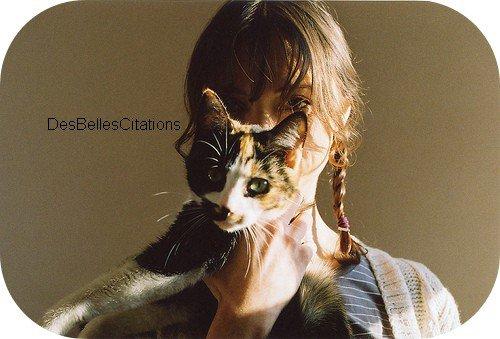 """""""Un chat ne voit pas quelle raison il aurait d'obéir à un autre animal, fût-il sur deux pattes."""" S. Thomson."""
