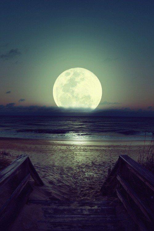 """"""" Personne n'admirerait les étoiles si elles étaient à portée de main. """" - Nietzsche. -"""