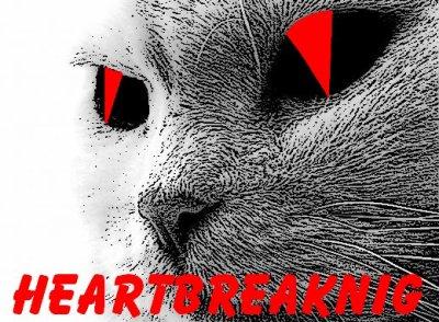 Bienvenue est pour ce qui connaisse pas le groupe,voici The HeartBreaking
