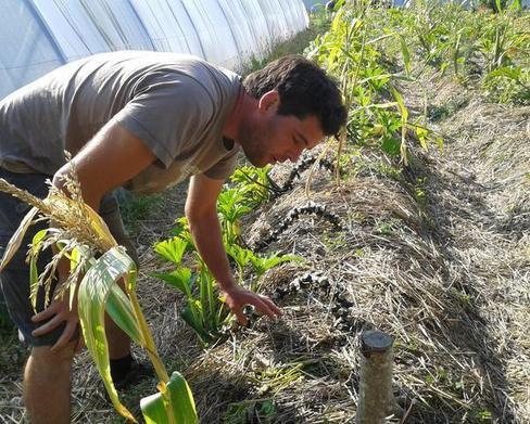 Indre-et-Loire - Tours - Environnement Il applique le crowdfunding au développement durable  08/10/2014 05:38