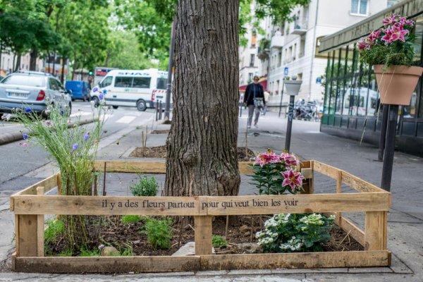 Une nouvelle loi permet aux Parisiens de se lâcher et de faire preuve d'imagination pour avoir leur propre jardin : végétalisons la capitale !