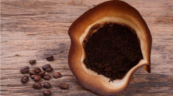 Le marc de café, l'or brun bénéfique au potager
