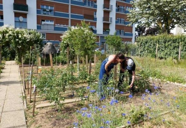 CommunesTours Indre-et-Loire - Tours - Sanitas Avoir sa parcelle au jardin partagé