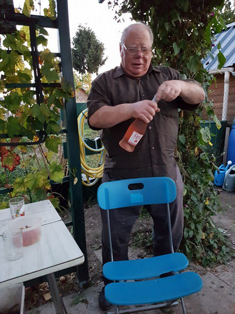 le dur travail au jardin sous la tonnelle de vigne