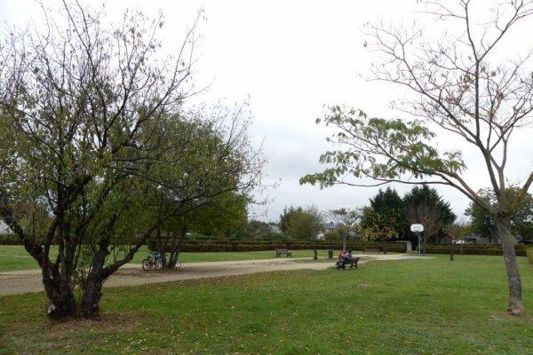 REPORTAGE-SOCIÉTÉREPORTAGES Paradis des fruits au jardin Gambetta de St-Pierre-des-Corps