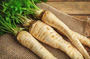 Le persil tubéreux : semis et culture de ce légume-racine