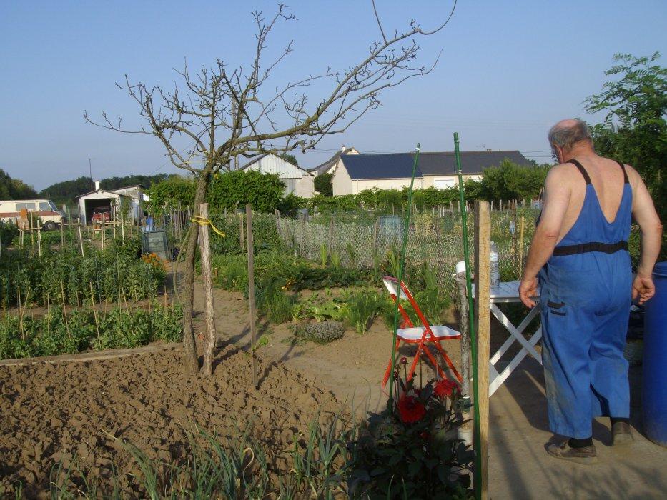 Blog de jardinfrou