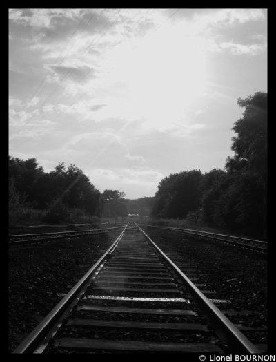 Le chemin.. Il y a tellement a decouvrir avaant de s arréter pour de bon