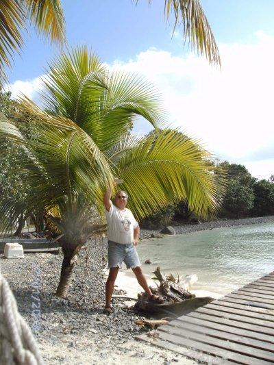 ESCAPADE  dans la mer des caraïbes en janvier 2010