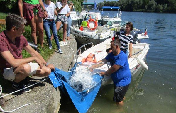 SORTIE EN BATEAUX avec RHIN NAUTISME et BAPTEME de BATEAU le 11 juin
