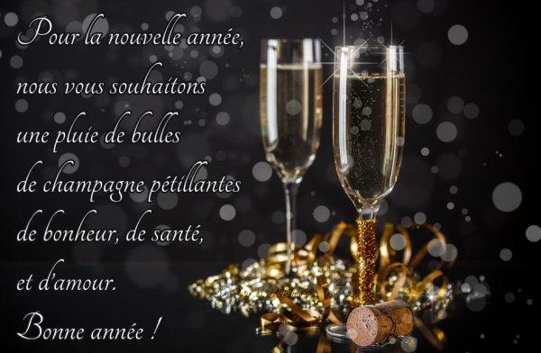MEILLEURS VOEUX pour cette nouvelle année