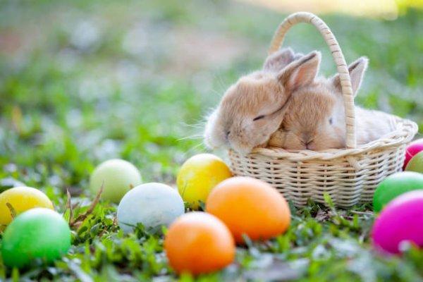 Joyeuses Pâques aux plaisanciers
