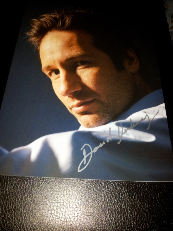 David Duchovny (The X-Files, Californication)