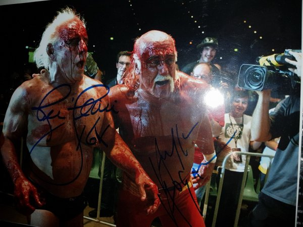Ric Flair & Hulk Hogan (Wrestler)