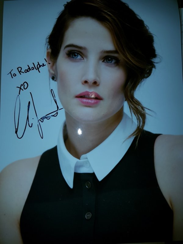 Cobie Smulders (How I Met Your Mother, Avengers, Jack Reacher 2)