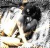LOVE-HEART / <<J'ai juste besoin d'une main qui se tends vers moi alors tend moi la tienne.>> (2008)