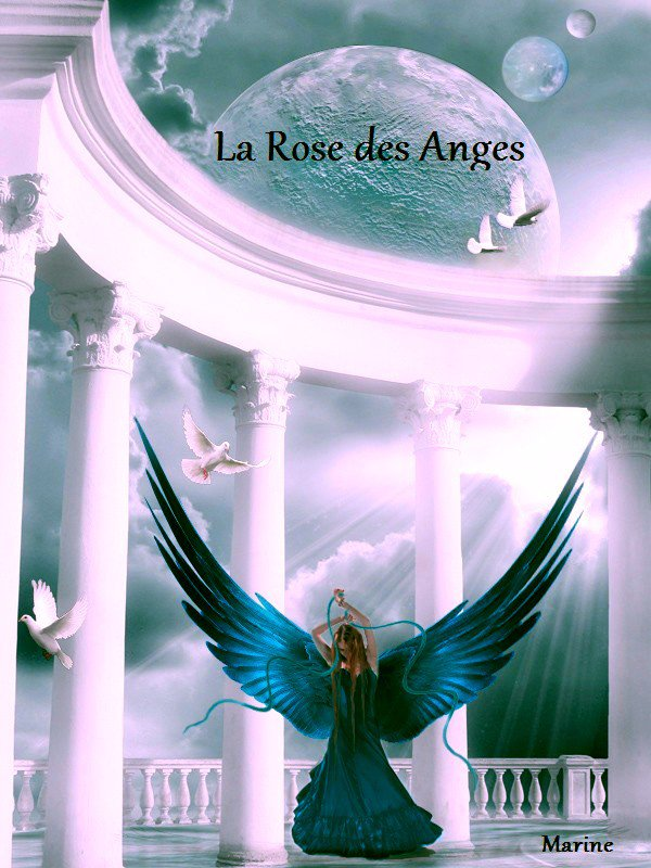 La Rose des Anges