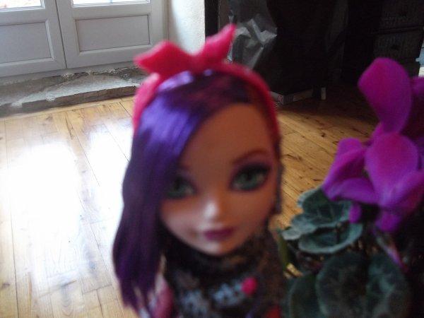 poppy 'o hair