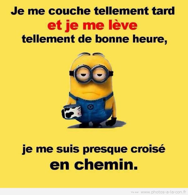 Citation De Minion Le Blog De Jojo71