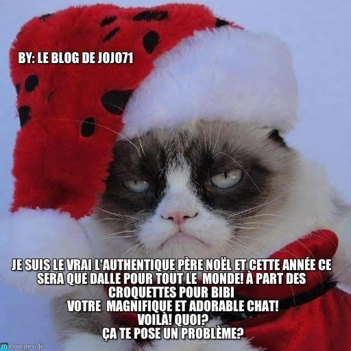 Bient t no l le chat du p re no l vous parle le blog de jojo71 - Image de chat de noel ...
