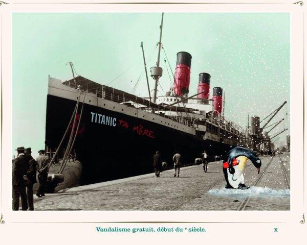 C'est le pingouin le fautif