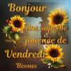 BONJOUR, UNE SUPERBE JOURNÉE DE VENDREDI...