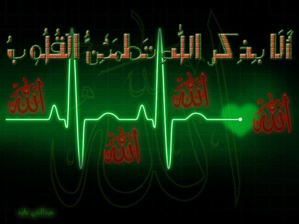 Art of Islamic Calligraphy