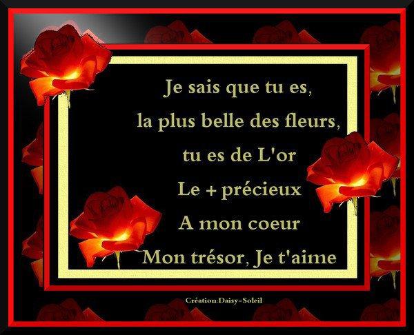 Pour Toi Ma Petit Rose Rouge Amour Amour D Un Jour Amour Pour Toujours