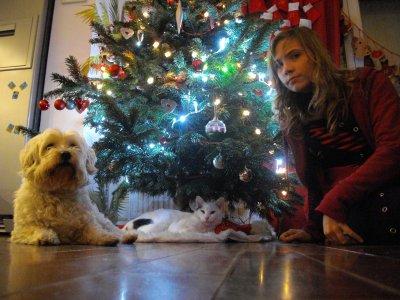 Et celle là c'est moi mon chat et mon chien ! Jla surkiff un max
