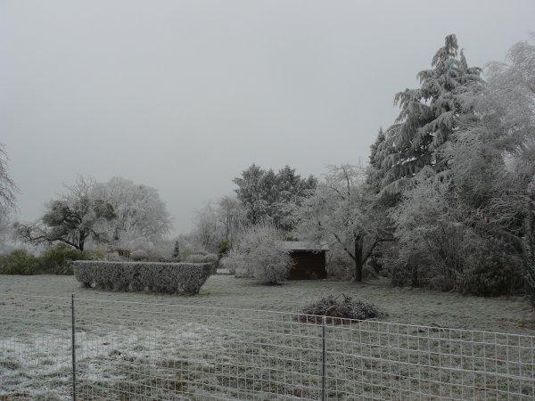 1er janvier 2017