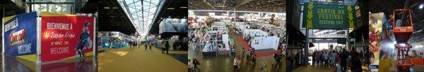 Japan Expo 2013 - 14ème Impact / Comic Con 2013 - 5ème Anniversaire !