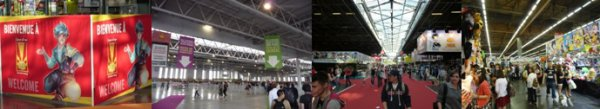 Japan Expo 2014 - 15ème anniversaire !