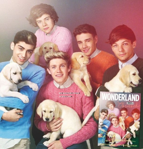 Photo shoot des 1D