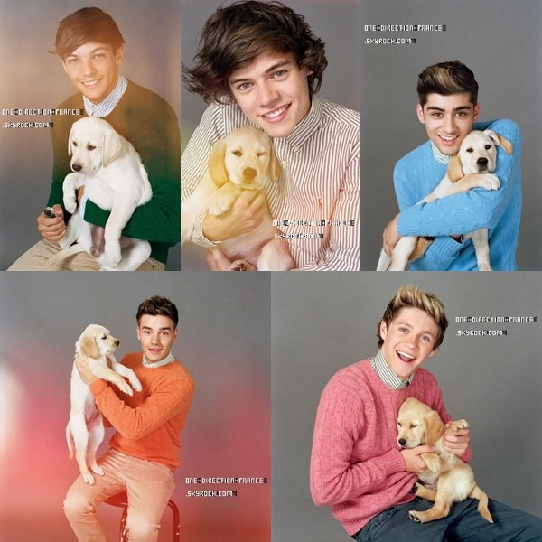 Photo shoot des 1D (suite)