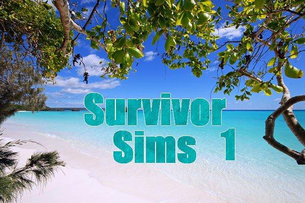 """Concept """"Survivor"""""""