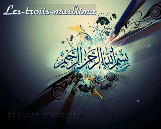 Salam Aleykom wa rahmatoulah wa barakatouhou