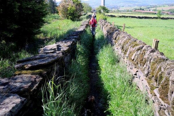 A2052 : Autour de l'aqueduc romain du Gier