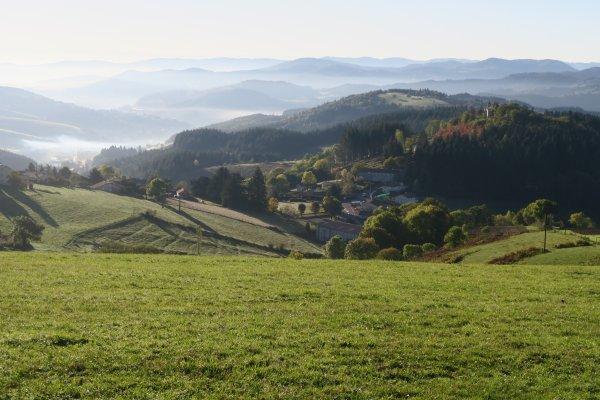A2072 : Dans les monts du Lyonnais